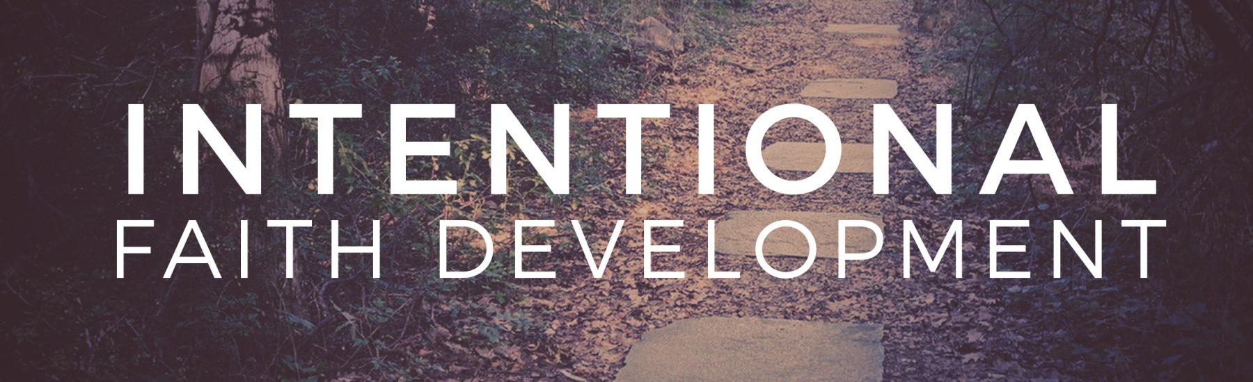 Adult Intentional Faith Development